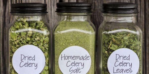 Sale di sedano: come e perch� preparalo e utilizzarlo