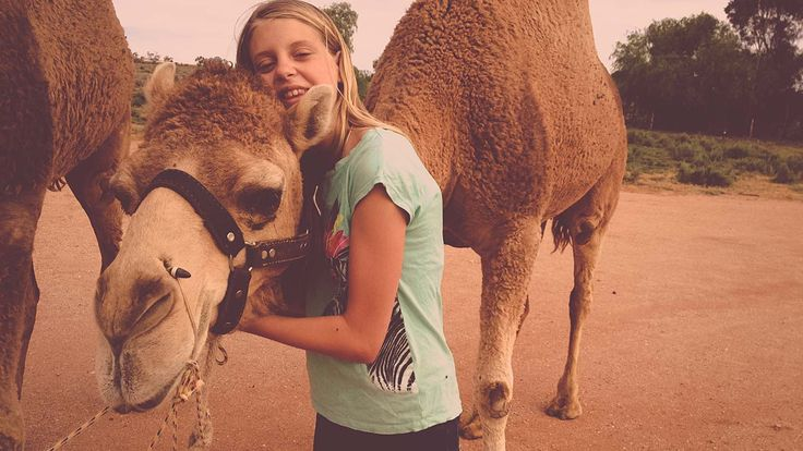 Many kids have pet dogs or cats. But 14-year old Anna has pet camels. They're not only her best friends she's also training them to race. Anna herself tells us how and why.