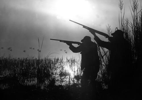 Duck hunt. #Hunting #Waterfowl #Ducks