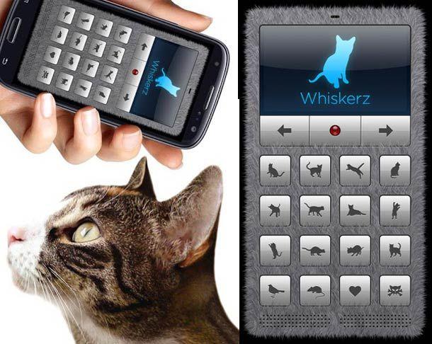 Cat Translator – Une app iPhone pour parler à votre chat