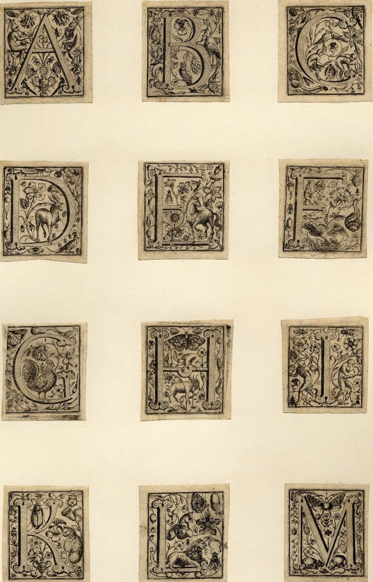 Letters of the alphabet decorated with animals, insects and plants: A-Z. 1596