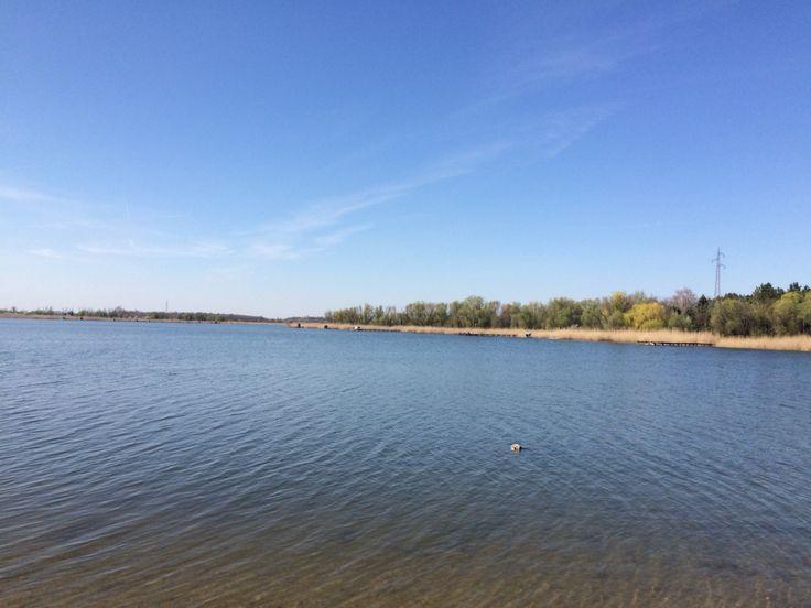 Lake in Vojvodina near Backa Topola
