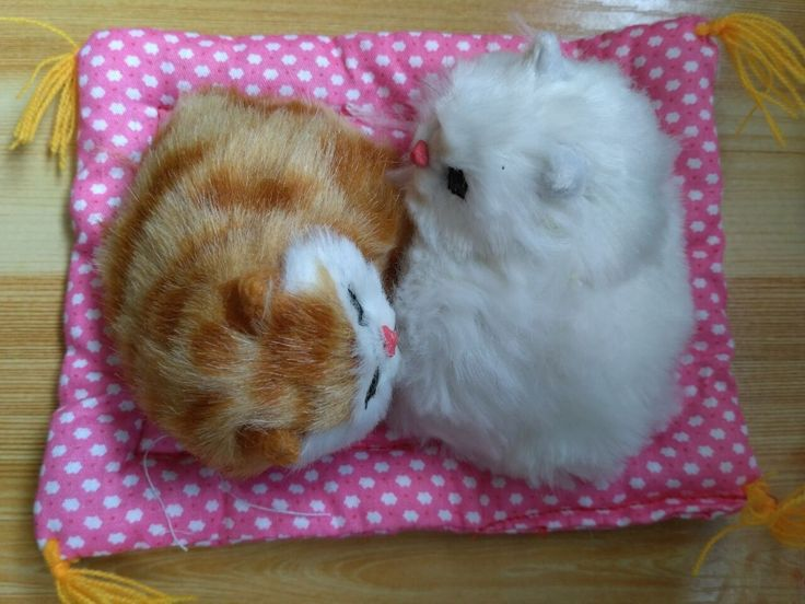 small cute simulation yellow and white cat dolls polytene & fur cat models on a mat gift 16x12cm //Price: $US $14.58 & FREE Shipping //     #rchelicopters