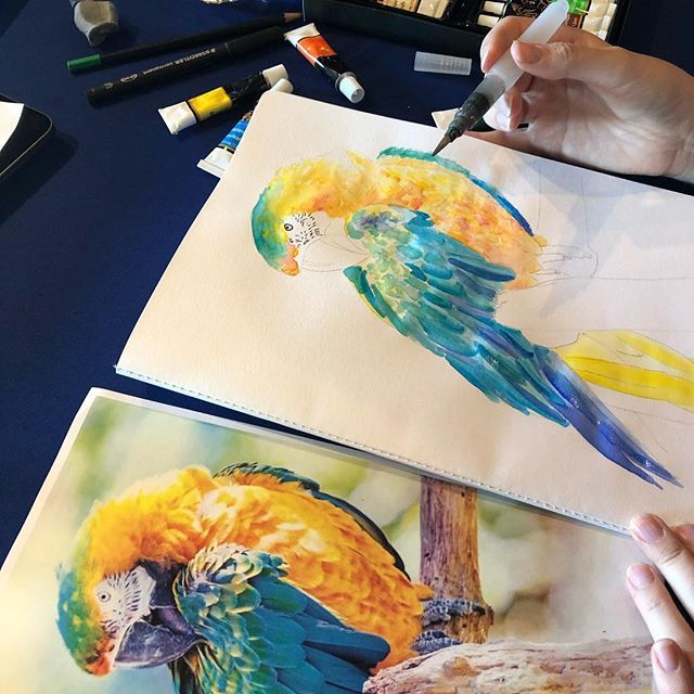 Check Out This Amazing Artwork Using Articci S Watercolor Paints