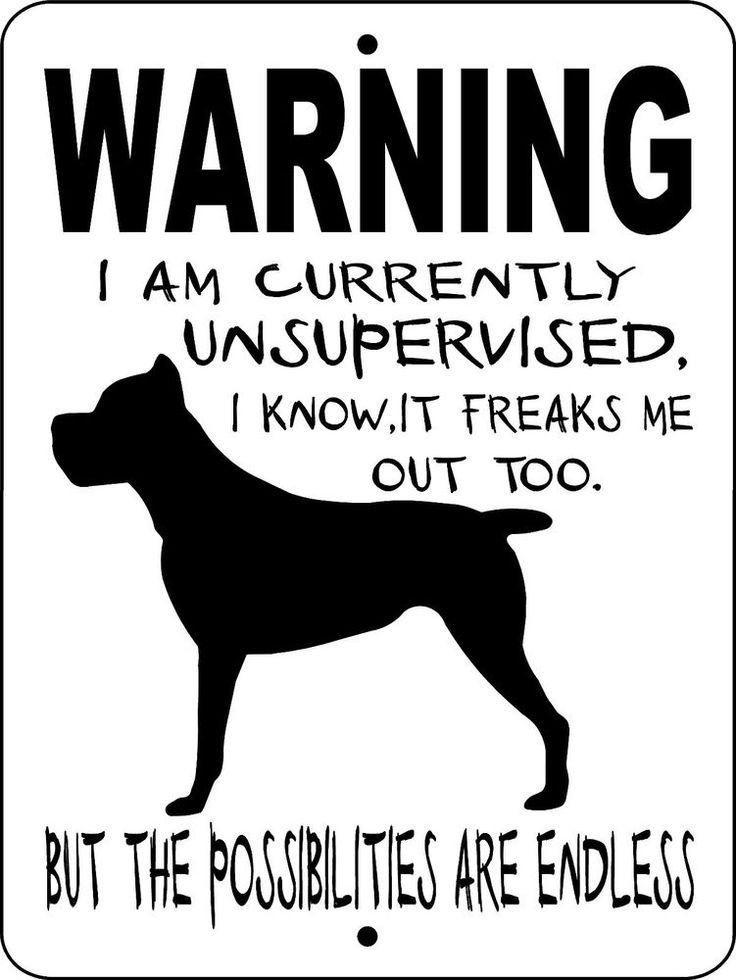 """CANE CORSO Dog Sign,9""""x12"""" Aluminum Sign,Guard Dog,Security Dog Sign, WUS1cc"""
