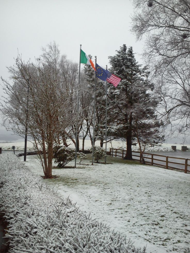 Morning morning in Aghadoe and it's another snowy one!