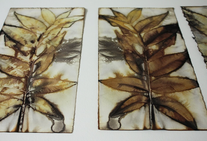 leaves, pressed between two papers, bound between woods pieces, steeped in water with iron added.  Works on some fabrics, too.
