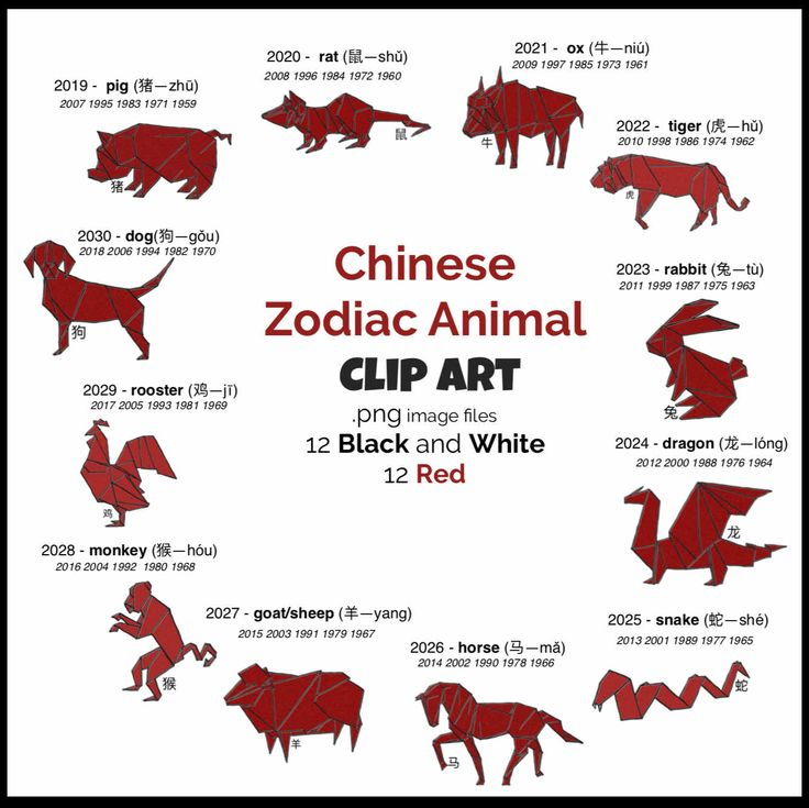2020 chinese new year card zodiac animal coloring 鼠