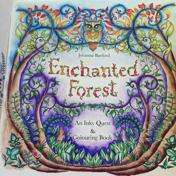 First Page Completed Enchanted Forest