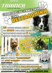 Αγώνες agility στη Θεσσαλονίκη 7-8/11/2015