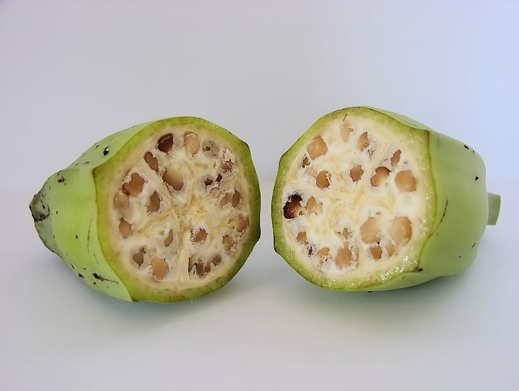 How Many Undomesticated Fruits and Vegetable Can You Recognize? - http://www.outoftheboxscience.com/health/how-many-undomesticated-fruits-and-vegetable-can-you-recognize/