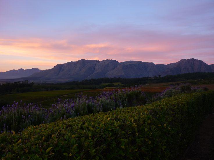 Stellenbosch, South Africa - http://www.magiccoach.com
