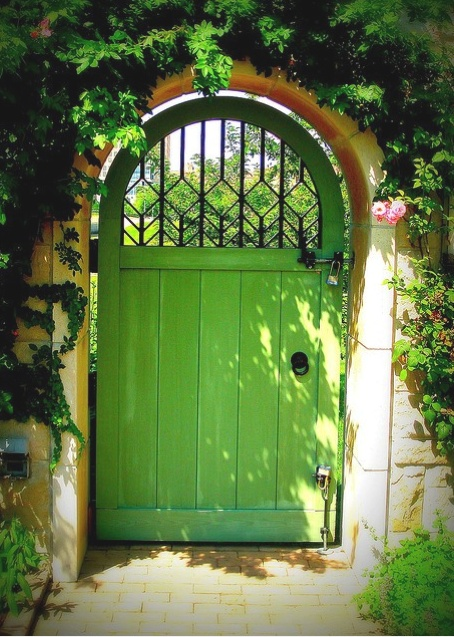 back yard gate.
