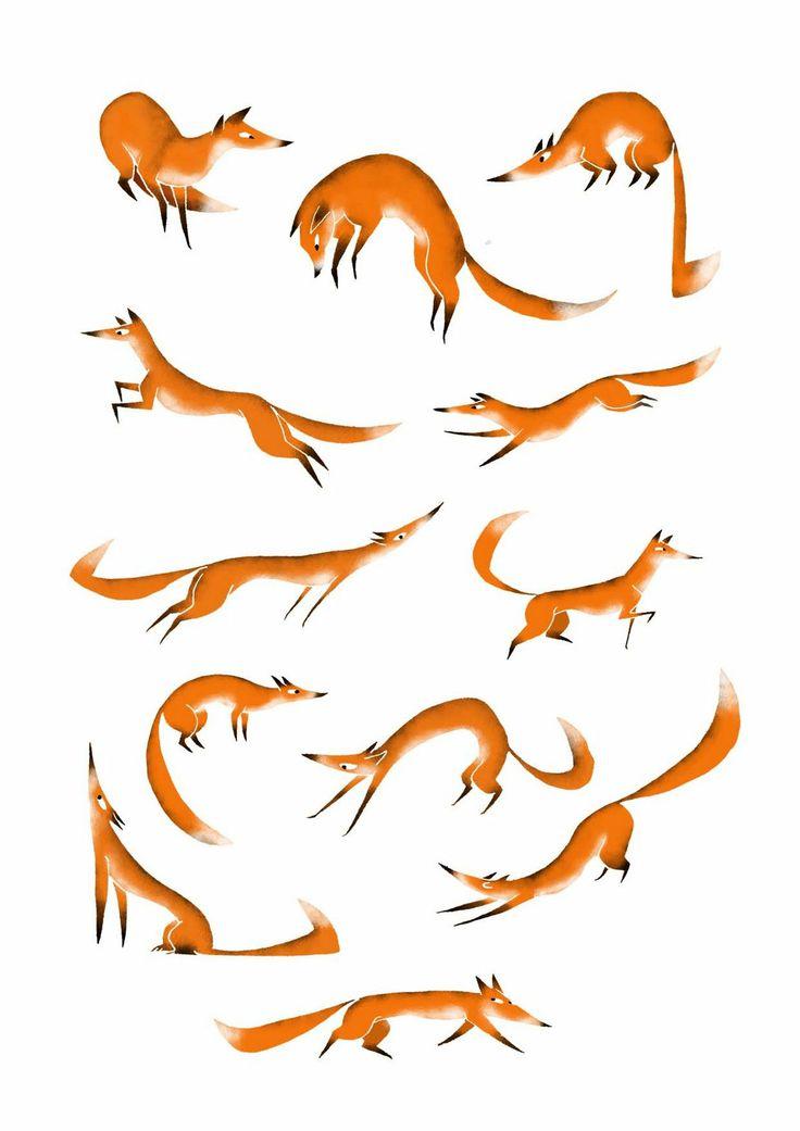 fish's aquarium: les renards