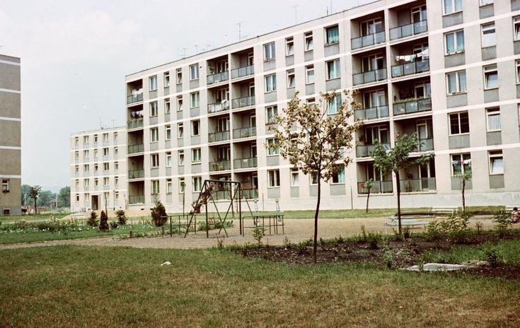 Gagarin utca. 1969