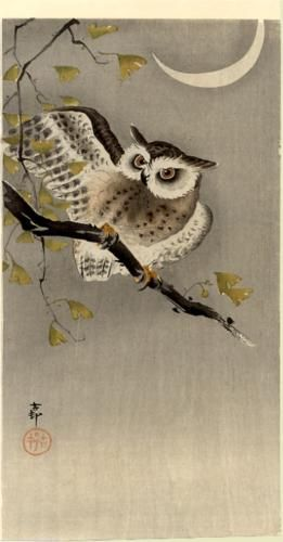 Owl on ginkgo branch (Scops owl under crescent moon) - Ohara Koson: Cherries Blossoms, Owl Moon, Branches Scop, Scop Owl, Ginkgo Branches, Ohara Koson, Crescents Moon, Beads Scene, Paintings Owl