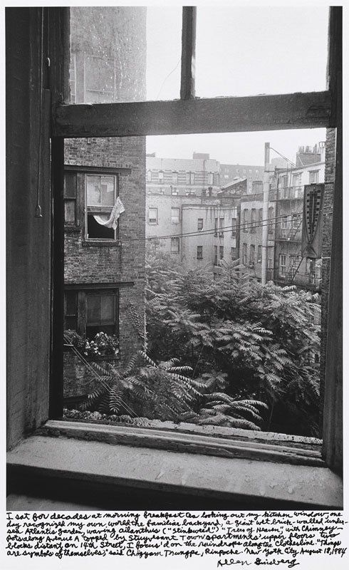 Allen Ginsberg: photographs from the Beat Generation