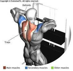 TRAPS - CABLE UPRIGHT ROW