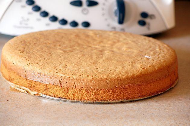 Biszkopt : Biszkopt Thermomix Składniki na biszkopt: 5 jajek 120 g cukru szczypta soli 100 g mąki pszennej 40 g mąki ziemniaczanej Wykonanie: Do naczynia Thermomix za. Przepis na Biszkopt