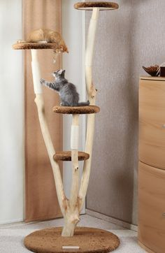 best 25 cat tree plans ideas on pinterest diy cat tower cat trees and cat condo. Black Bedroom Furniture Sets. Home Design Ideas