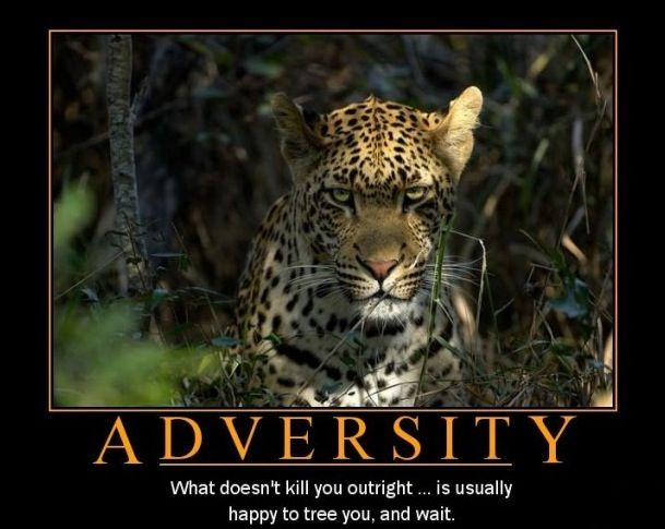 Essays on overcoming adversity
