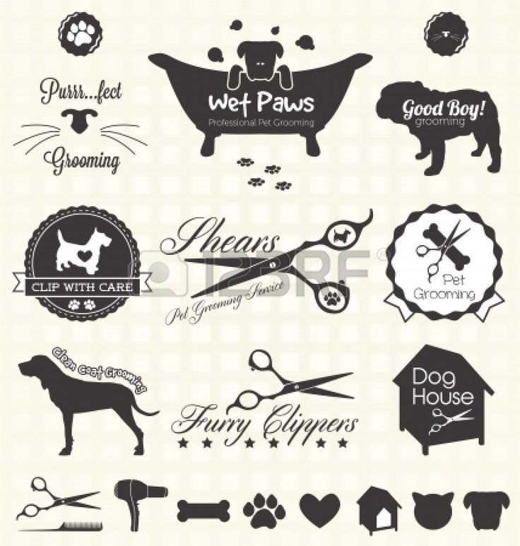 42 best doggie business images on pinterest business ideas vector set retro pet grooming labels buy this stock vector on shutterstock find other images solutioingenieria Choice Image