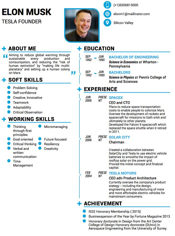 02a83cb030d81312da2d201c5b9d9858--knowledge-elon-musk Resume Examples Layout on what is best job, elementary teacher, microsoft word, simple creative,