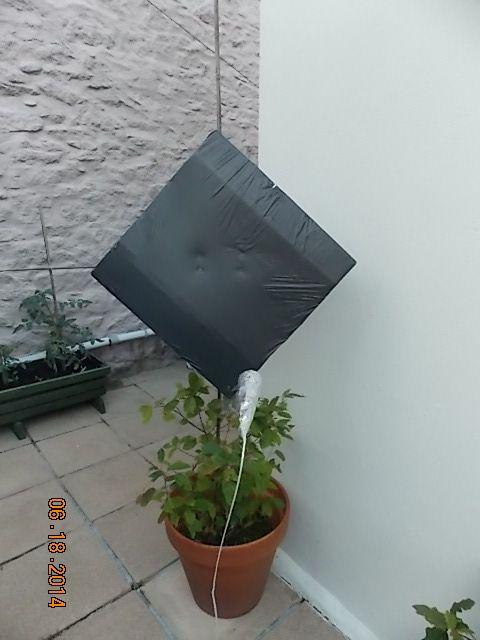 Diy Satellite Dish