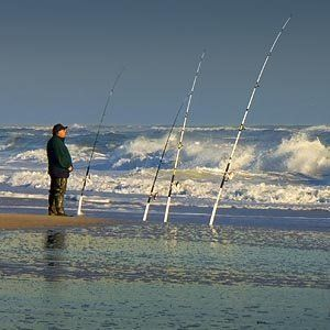 Surf fishing tips fishing pinterest surf fish and for Surf fishing tips