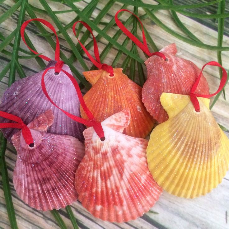 New colorful seashell Christmas ornaments!