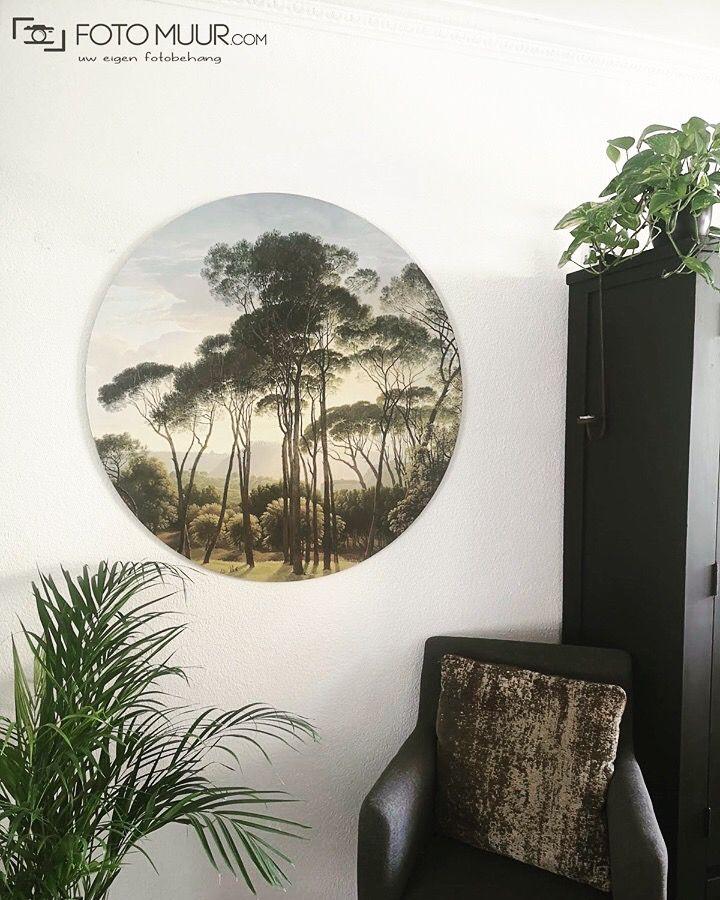 Behangcirkel Eigen Foto.Behangcirkel O 100 Cm Behang Fotomuur Fotobehang
