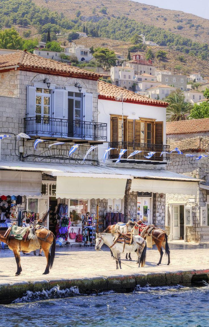 Donkeys at the port of Hydra, Greece