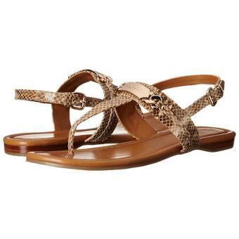 Zapatos COACH Caterine