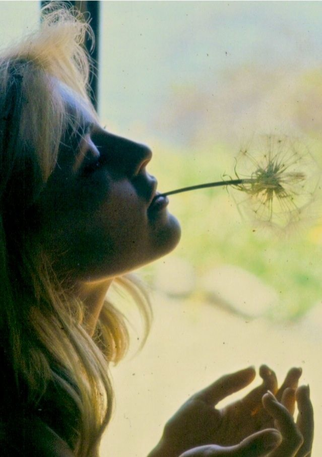 Sharon Tate photographed in Big Sur by Walter Chappell, 1964