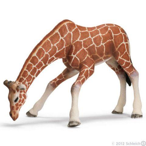 Samice žirafy pijící - Schleich