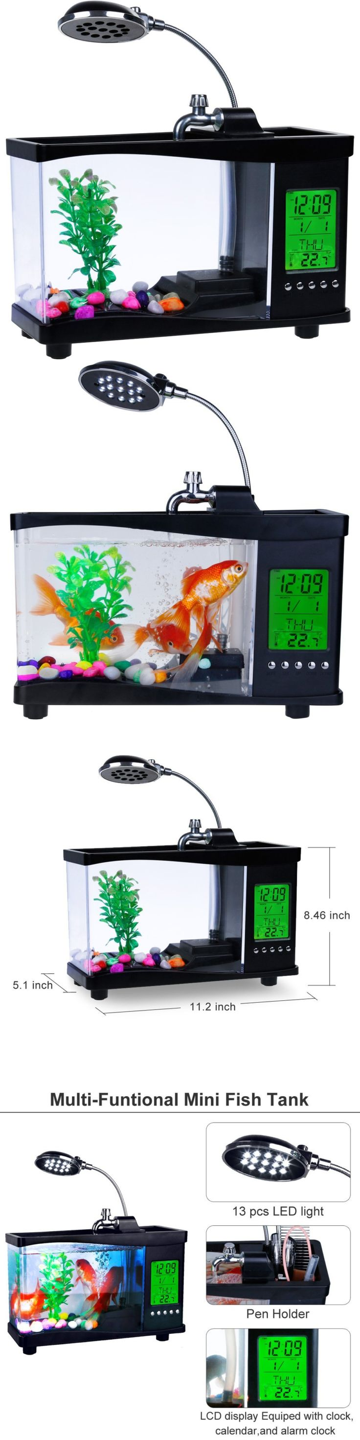 Freshwater Aquarium Fish Under 1 Inch - Aquariums and tanks 20755 zacro usb mini fish tank 0 33 gallon aquarium kit