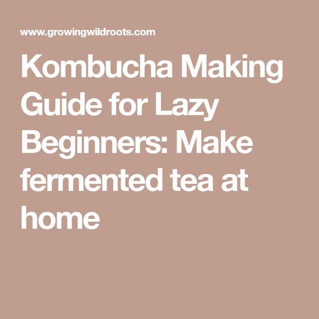 Kombucha Making Guide for Lazy Beginners: Make fermented tea at home