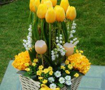 Dekorace s tulipány do žluta