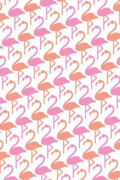 machimusume no handkerchief / flamingo / FROM GRAPHIC
