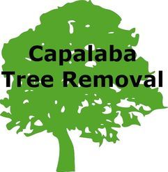 Capalaba Tree Removal Launches New Website for Services in Capalaba, Queensland