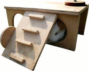 guinea pig house