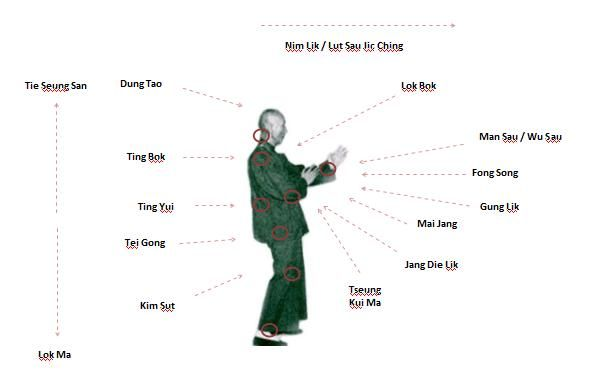 Understanding Structure Sil Lim Tao Stance YEE GEE KIM YEUNG MA Lik Chong Gerk Jang Sang Whole body structural alignment 1.Ankles 5. Shoulders 2.Knees 6. Neck 3.Hips 7.…