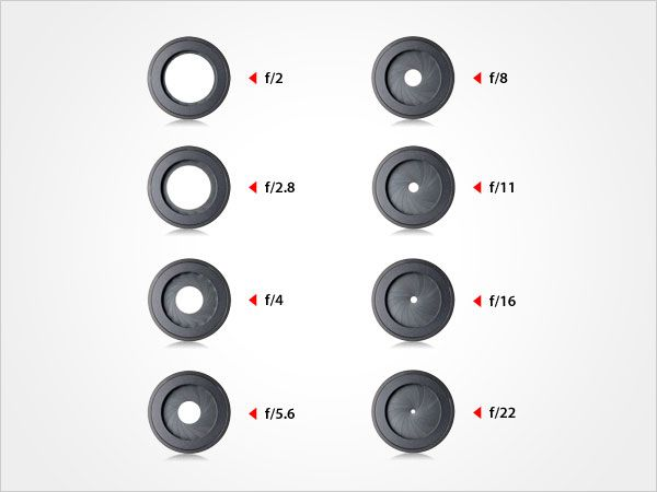 "Aperture Range - The aperture range identifies the widest to smallest range of lens openings, i.e. f/1.4 (on a super-fast lens) to f/32, with incremental ""stops"" in between (f/2, f/2.8, f/4, f/5.6, f/8, f/11, f/16, and f/22)."