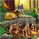 WildlifeFantasy Art, Mama Wolf, Daddy Ray