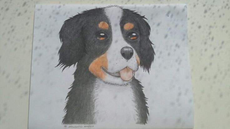 My student's art