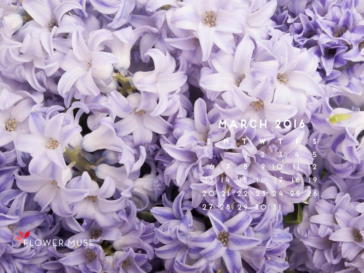 March 2016 Calendar - Download for FREE on Flower Muse blog: http://www.flowermuse.com/blog/march-2016-calendar/