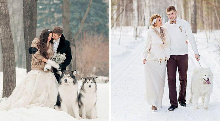 Зимние свадебные фотосессии - идеи фотосъемки на природе, фото и видео