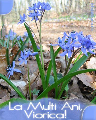 Felicitare de Florii cu mesajul La multi ani, Viorica!