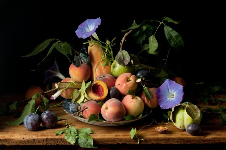 Paulette  Tavormina - Peaches and Morning Glories, after G.G. offered by Robert Klein Gallery on InCollect