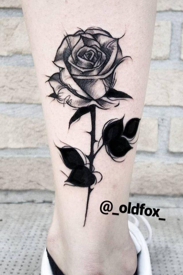 Rosa que seria em chamas em Aron  2